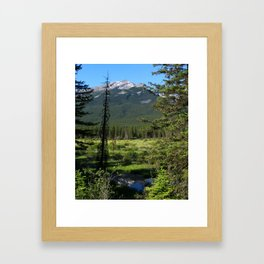 Beautiful Bow Valley Framed Art Print