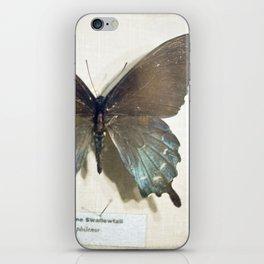 Swallowtail iPhone Skin