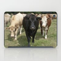 cows iPad Cases featuring Cows by Rachel's Pet Portraits
