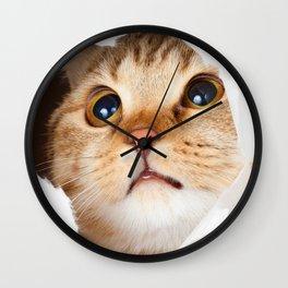 Cute cat braking sheet Wall Clock
