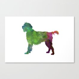 Wirehaired Pointing Griffon Korthals in watercolor Canvas Print