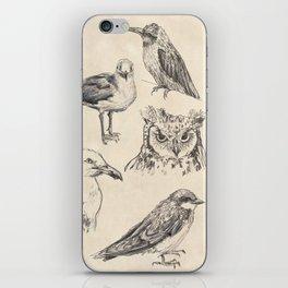 Bird vintage sketches iPhone Skin