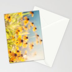 summer susans Stationery Cards