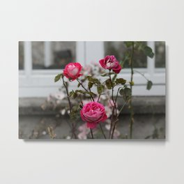 Rose Triangle Metal Print