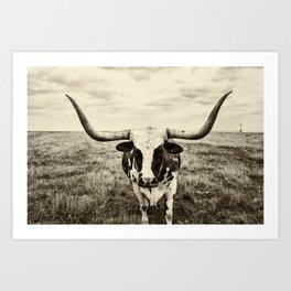 Lone Longhorn Art Print