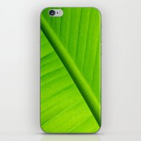 banana leaf iPhone & iPod Skins featuring Upclose Banana Leaf by Erin Mac Photography