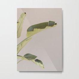 Tropical Palm Banana Leaf Metal Print