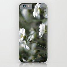 Snow In Summer iPhone 6s Slim Case