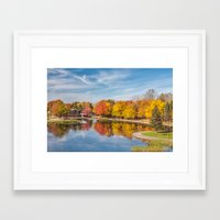 beaver Framed Art Prints featuring Beaver Lake by Photos By Healy