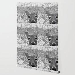 roadblock Wallpaper