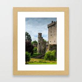 Blarney Framed Art Print