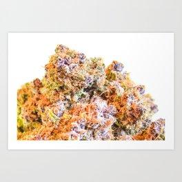 Purple Gorilla  Art Print