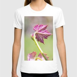 the vine is growing T-shirt