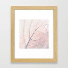Abstract Leaf 2 Framed Art Print