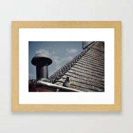 bird on a roof Framed Art Print