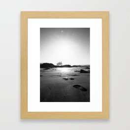 American Star Framed Art Print
