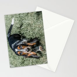 Basset Hound Puppy Droopy Ears Walking in Green Grass Cute Adorable Dog Photography Stationery Cards