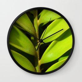 Vegetal balance Wall Clock