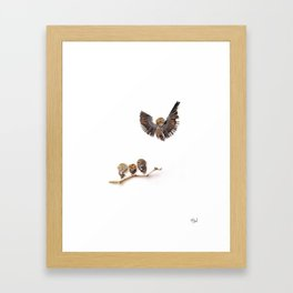 Bird birds birds Framed Art Print