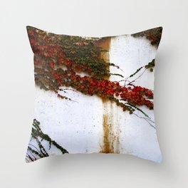 Impermanence  Throw Pillow