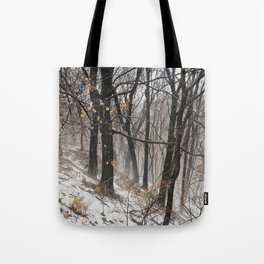 Winter at the park Tote Bag