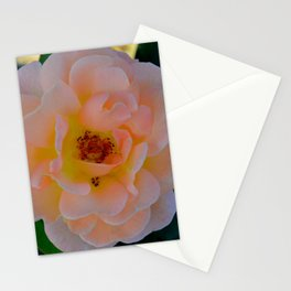 Peachy by Teresa Thompson Stationery Cards