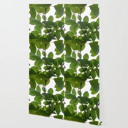 Tree and light Wallpaper