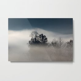 Morning Fog with Trees Metal Print