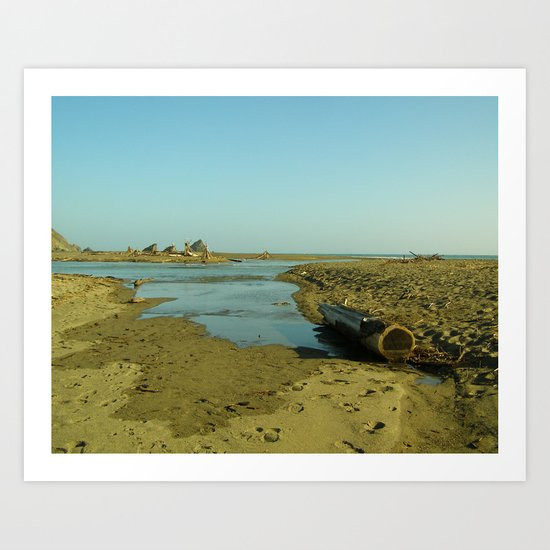 Navaro Beach IV Art Print