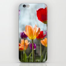 Tulip Dance iPhone & iPod Skin