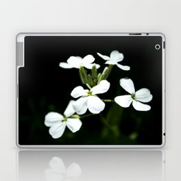 Little White Flowers Laptop & iPad Skin