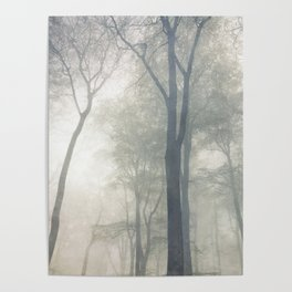 Cathedral of Trees Poster