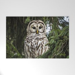 Barred Owl Welcome Mat