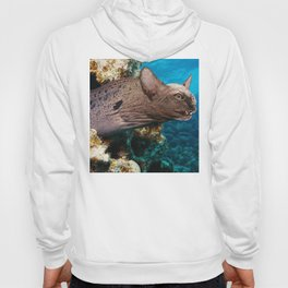 Moray Eel Cat Hoody