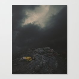 In the Shallow of the Night Canvas Print