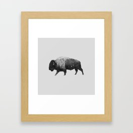 Buffalo, Bison Framed Art Print