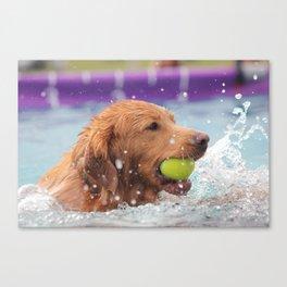 Splashing Around Canvas Print