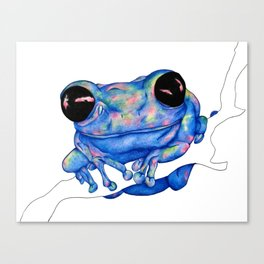 """Sherbert"" the Frog Canvas Print"
