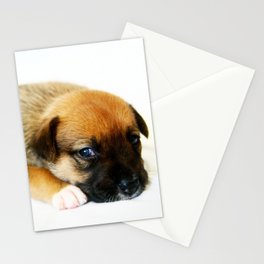Bailey 2 Stationery Cards