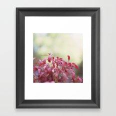 Love Autumn Colors Framed Art Print