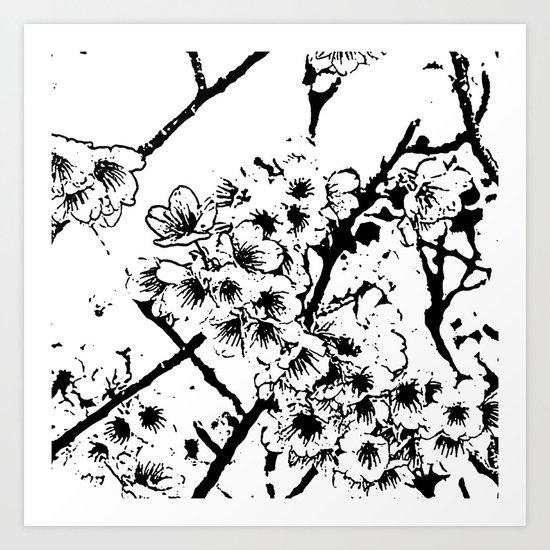 Cherry Blossom #2 Art Print