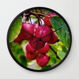 Crab Apple Cluster Wall Clock