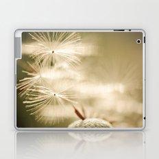 Coquette Laptop & iPad Skin