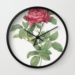 Rosa gallica pontiana, also known as Bridge Rose from Les Roses (1817-1824) by Pierre-Joseph Redoute Wall Clock