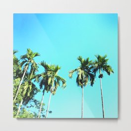 Beetle Nut Tree Metal Print