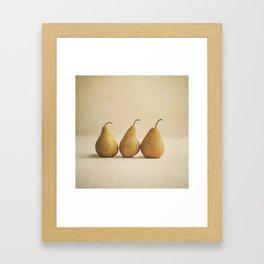 Bosc Pears Framed Art Print