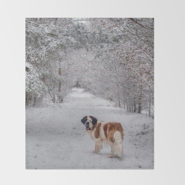 St Bernard dog in the snowy woods Throw Blanket