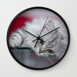 Lovely British Longhair Kitten Wall Clock