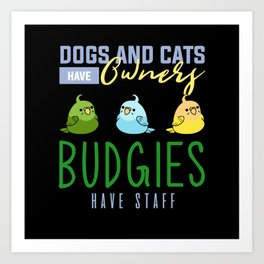 Budgie, Budgie Birds, Budgie parakeet Art Print