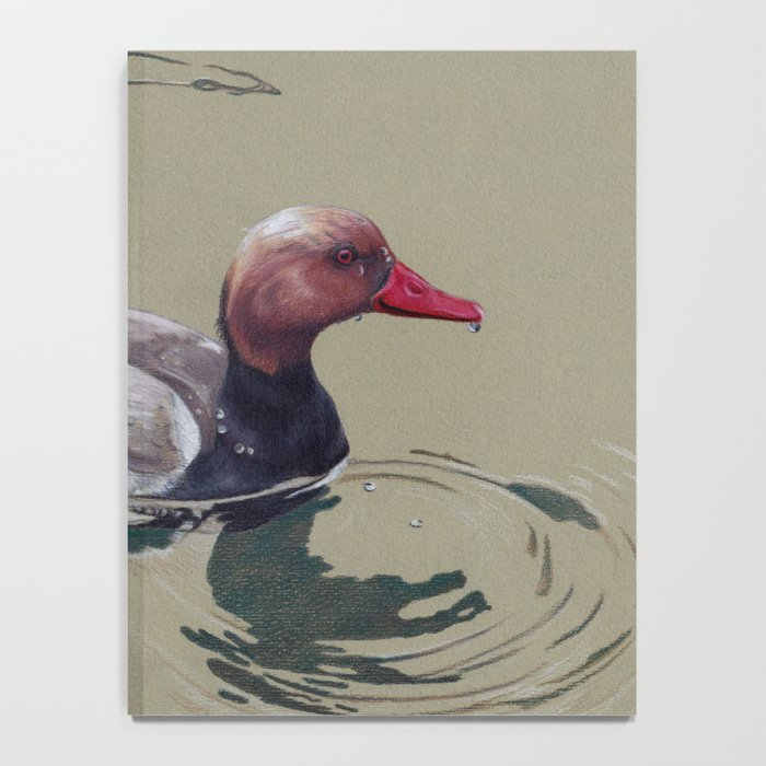 Red Crested Pochard (Netta Rufina) Colored Pencils Artwork Notebook